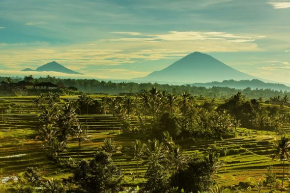 Jatiluwih Rice Terraces - Best Attractions in Bali