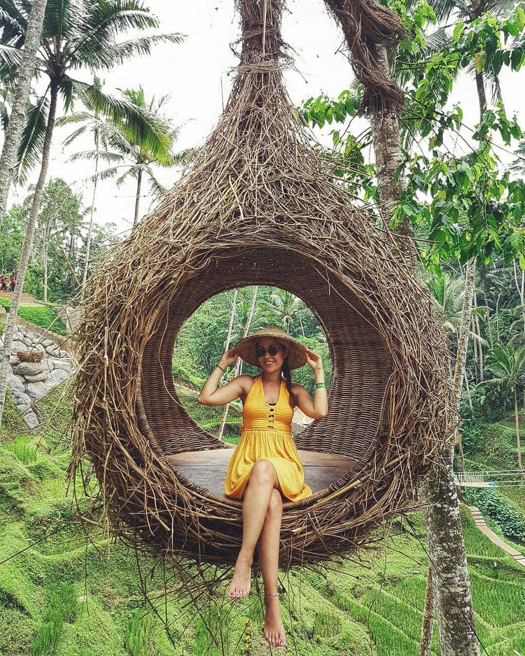 Terrace River Pool Nests - Bali Holiday Secrets